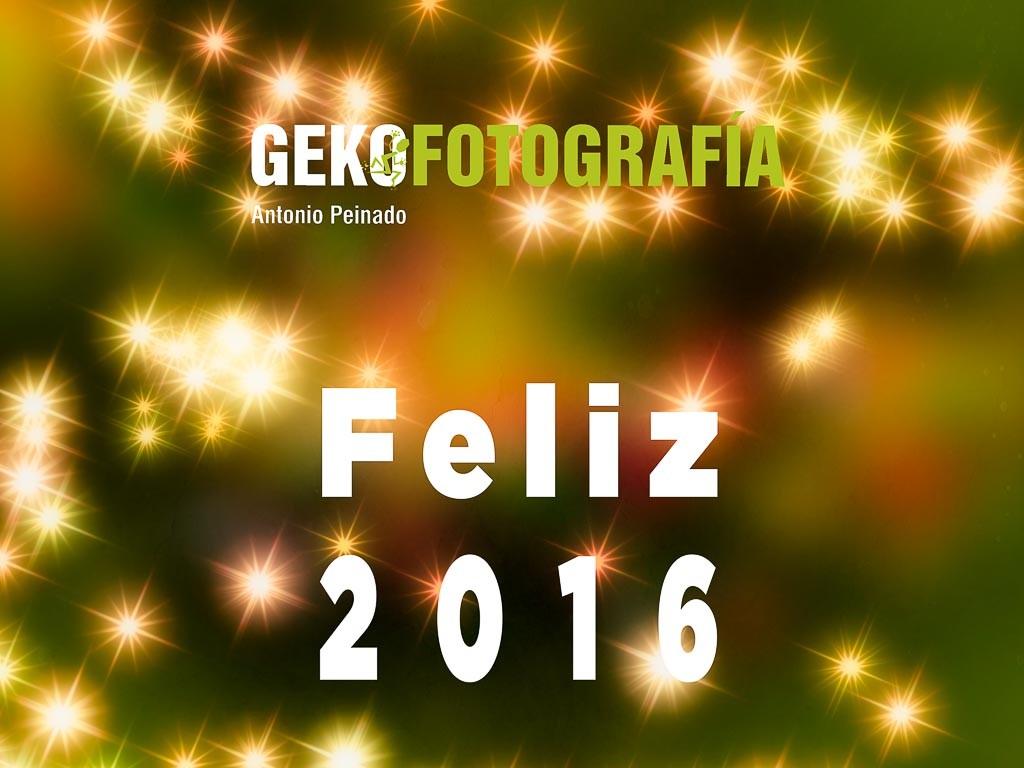 Feliz_2016-1024x768.jpg